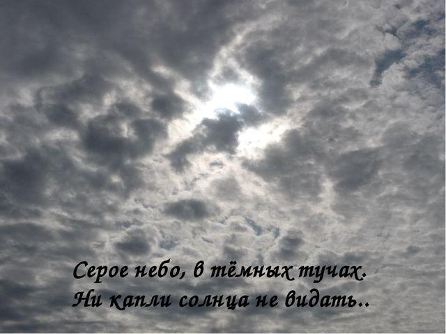 Серое небо, в тёмных тучах. Ни капли солнца не видать..