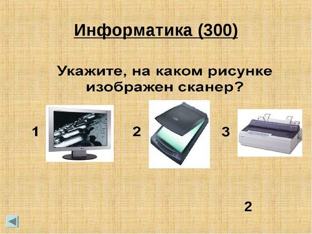 2 Информатика (300)