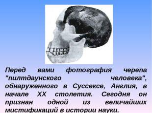 """Перед вами фотография черепа """"пилтдаунского человека"""", обнаруженного в Суссек"""