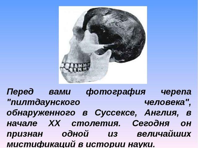 """Перед вами фотография черепа """"пилтдаунского человека"""", обнаруженного в Суссек..."""