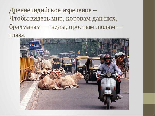 Древнеиндийское изречение – Чтобы видеть мир, коровам дан нюх, брахманам — ве...