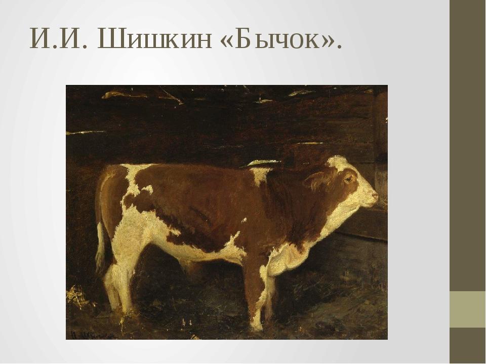 И.И. Шишкин «Бычок».