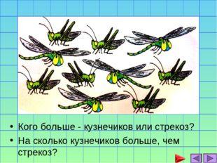 Кого больше - кузнечиков или стрекоз? На сколько кузнечиков больше, чем стрек