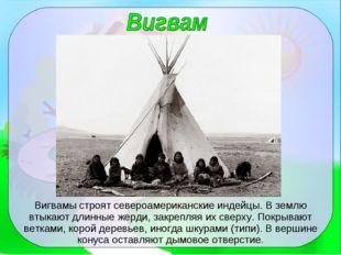 Вигвамы строят североамериканские индейцы. В землю втыкают длинные жерди, зак