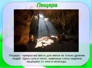 Пещера – прекрасное место для жилья не только древних людей. Здесь сухо и теп