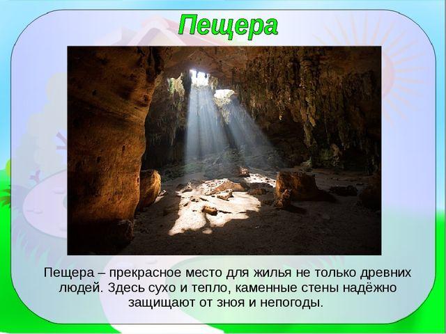 Пещера – прекрасное место для жилья не только древних людей. Здесь сухо и теп...