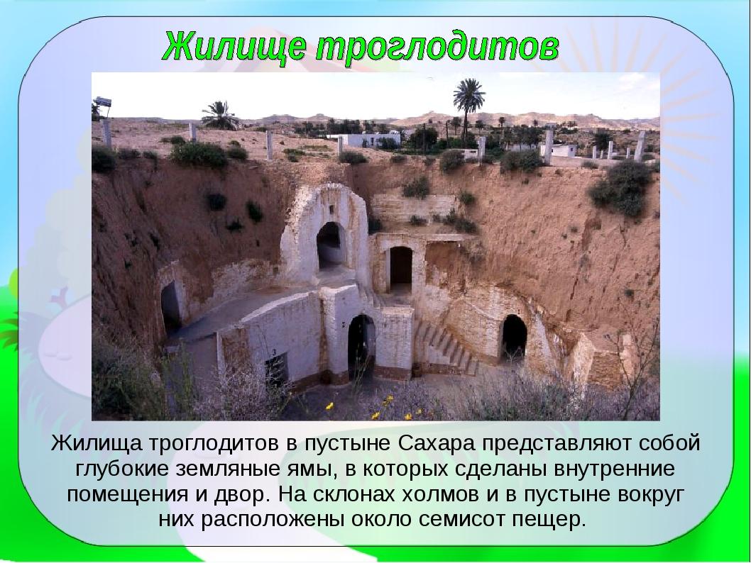Жилища троглодитов в пустыне Сахара представляют собой глубокие земляные ямы,...