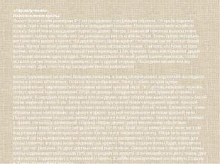«Неразлучники». Изготовление куклы: Лоскут белой ткани размером 6*7 см склады