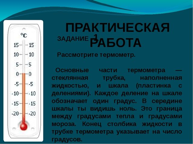 ЗАДАНИЕ 1 Рассмотрите термометр. Основные части термометра — стеклянная труб...
