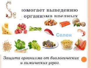помогает выведению изорганизма вредных веществ. Защита организма от биологи