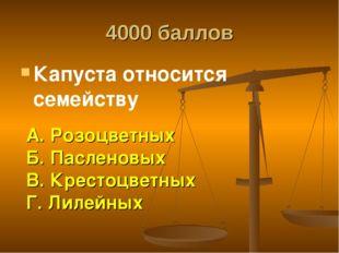 4000 баллов Капуста относится семейству А. Розоцветных Б. Пасленовых В. Крест