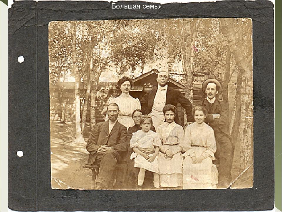 Большая семья Большая семья