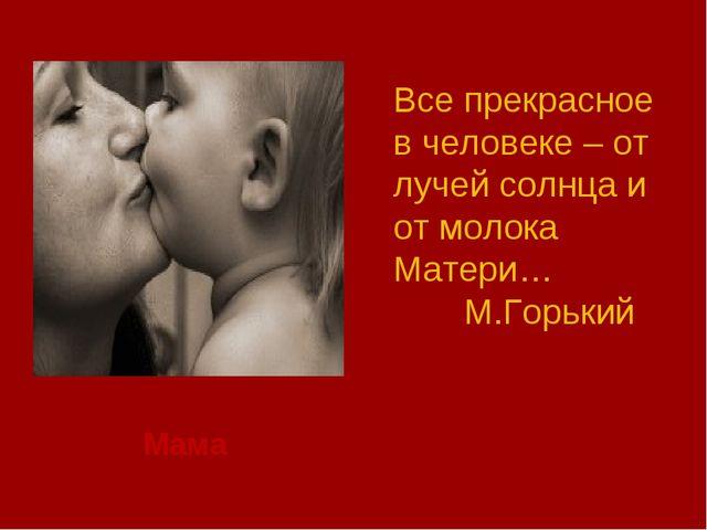 Мама Все прекрасное в человеке – от лучей солнца и от молока Матери… М.Горь...
