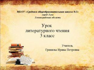 МБОУ «Средняя общеобразовательная школа №5» город Луга Ленинградская область