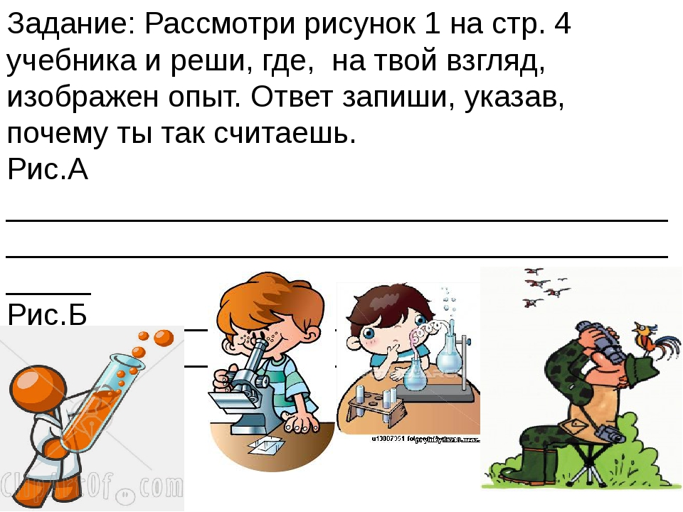 Задание: Рассмотри рисунок 1 на стр. 4 учебника и реши, где, на твой взгляд,...