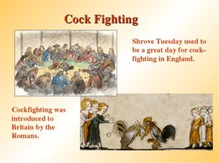 Cock Fighting Cockfighting was introduced to Britain by the Romans. Shrove Tu