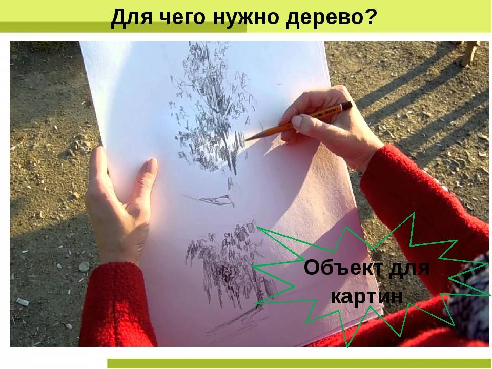 Для чего нужно дерево? Объект для картин