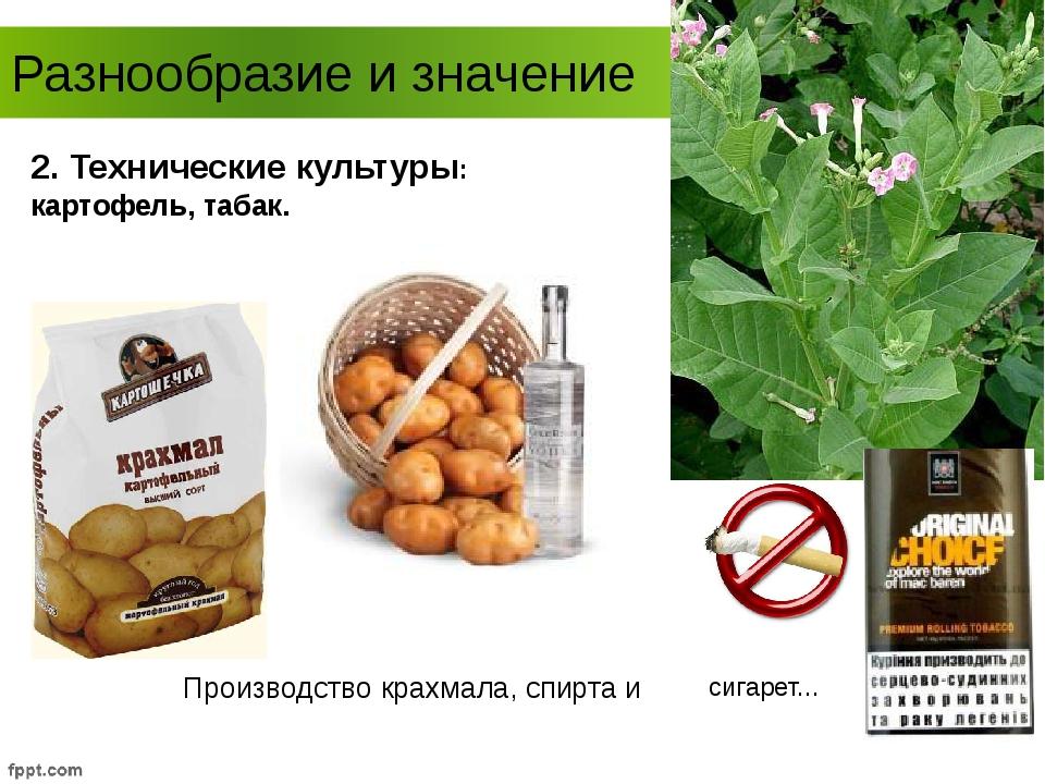 Разнообразие и значение 2. Технические культуры: картофель, табак. Производст...