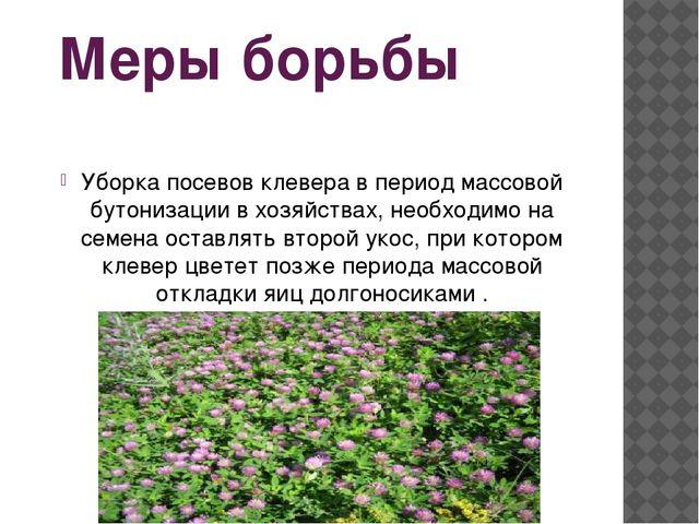 Меры борьбы Уборка посевов клевера в период массовой бутонизации в хозяйствах...