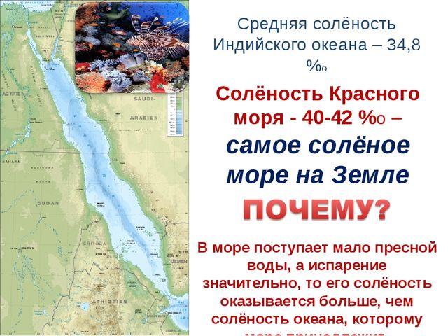 В море поступает мало пресной воды, а испарение значительно, то его солёность...
