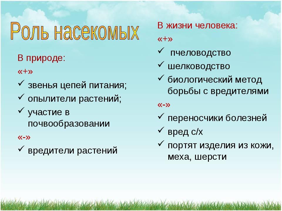 В природе: «+» звенья цепей питания; опылители растений; участие в почвообраз...