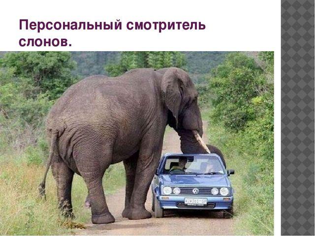 Персональный смотритель слонов.