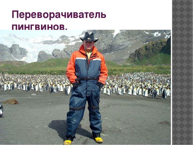 Переворачиватель пингвинов.