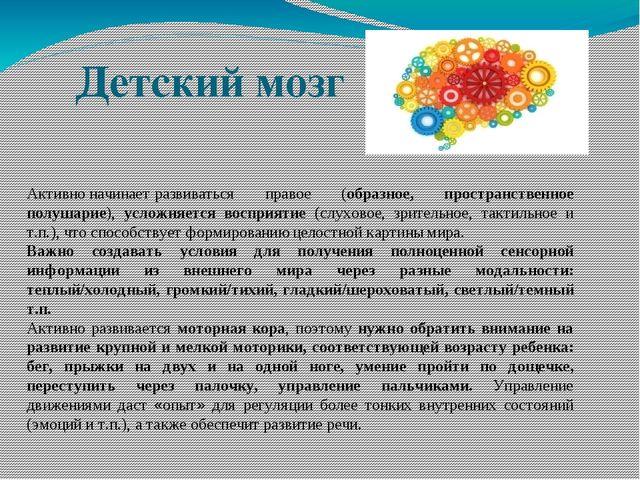 Детский мозг Активноначинаетразвиваться правое (образное, пространственное...