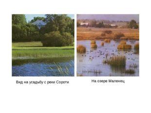 Вид на усадьбу с реки Сороти На озере Маленец