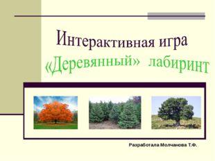 Разработала Молчанова Т.Ф.