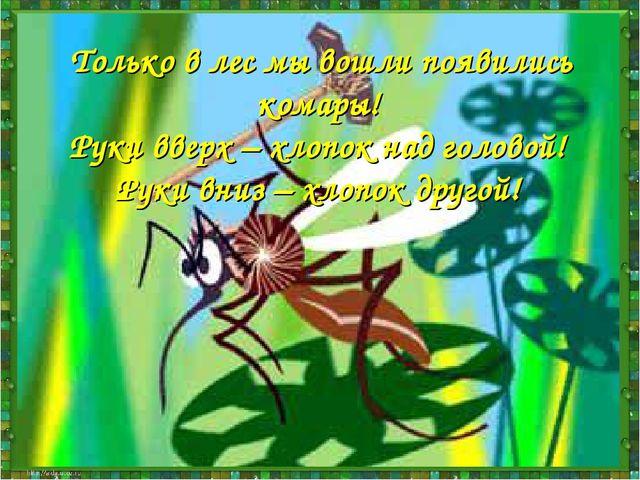 Только в лес мы вошли, появились комары. Руки вверх, хлопок над головой, Руки...