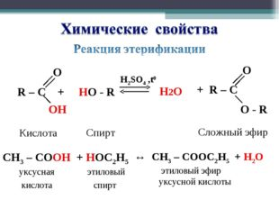 R – C + HO - R H2SO4 ,t0 O ОH OH Кислота Спирт Сложный эфир CH3 – CОOH + HОC