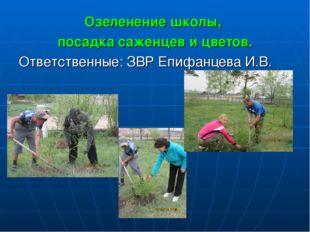 Озеленение школы, посадка саженцев и цветов. Ответственные: ЗВР Епифанцева И.В.