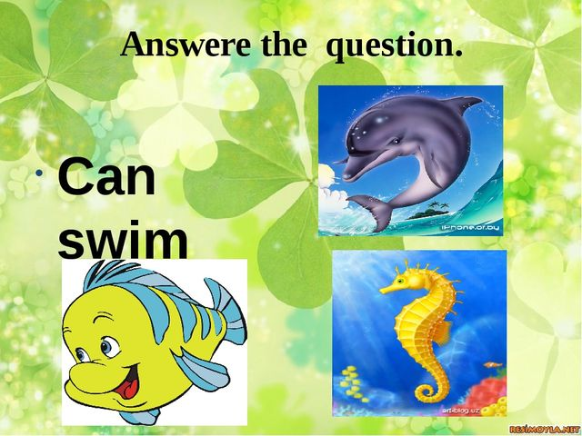 Answere the question. Can swim