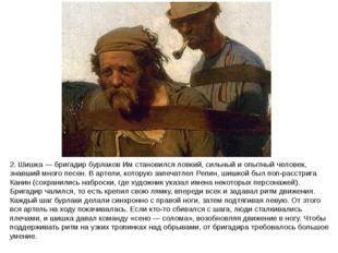 2. Шишка — бригадир бурлаков Им становился ловкий, сильный и опытный человек,
