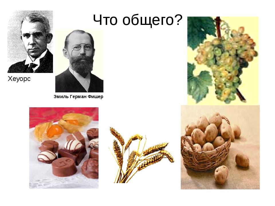 Что общего? Хеуорс Эмиль Герман Фишер