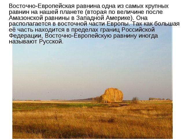 Восточно-Европейская равнина одна из самых крупных равнин на нашей планете (...