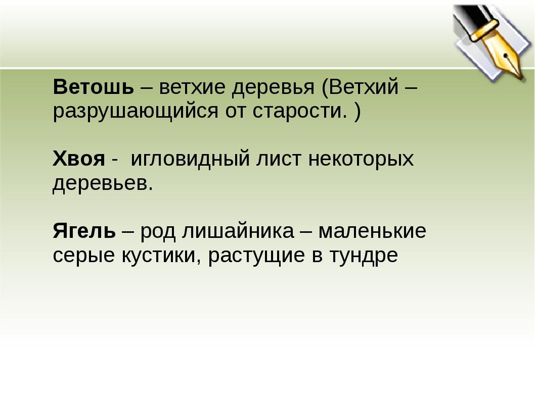 Ветошь – ветхие деревья (Ветхий – разрушающийся от старости. ) Хвоя - игловид...