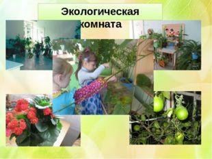 Экологическая комната