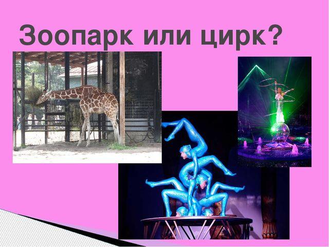 Зоопарк или цирк?