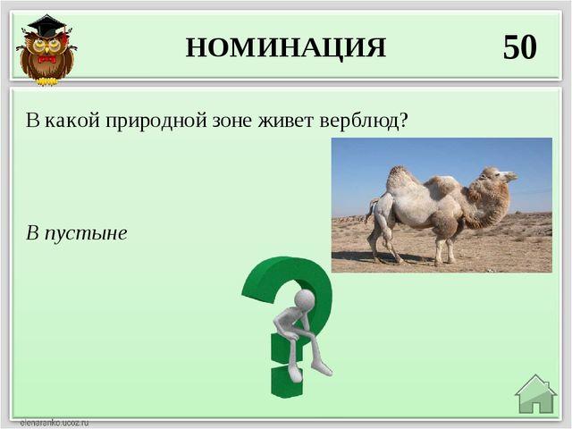 НОМИНАЦИЯ 50 В пустыне В какой природной зоне живет верблюд?