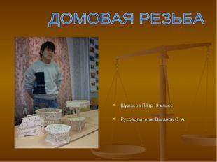 Шушаков Пётр 9 класс Руководитель: Ваганов С. А