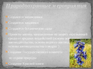 Создаются заповедники Создаются заказники Создаются ботанические сады Приняты