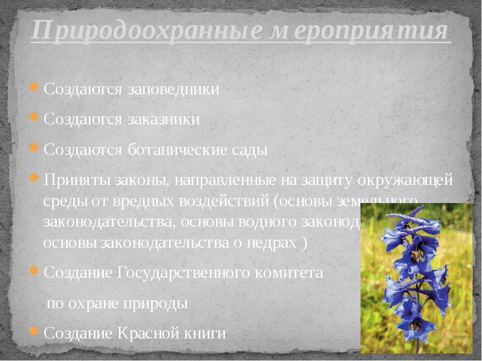Создаются заповедники Создаются заказники Создаются ботанические сады Приняты...