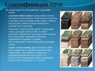 Классификация почв На территории России выделяют следующие почвы: Дерново-под