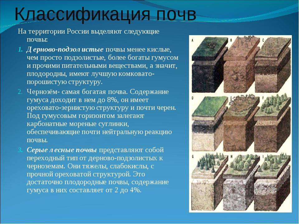 Классификация почв На территории России выделяют следующие почвы: Дерново-под...