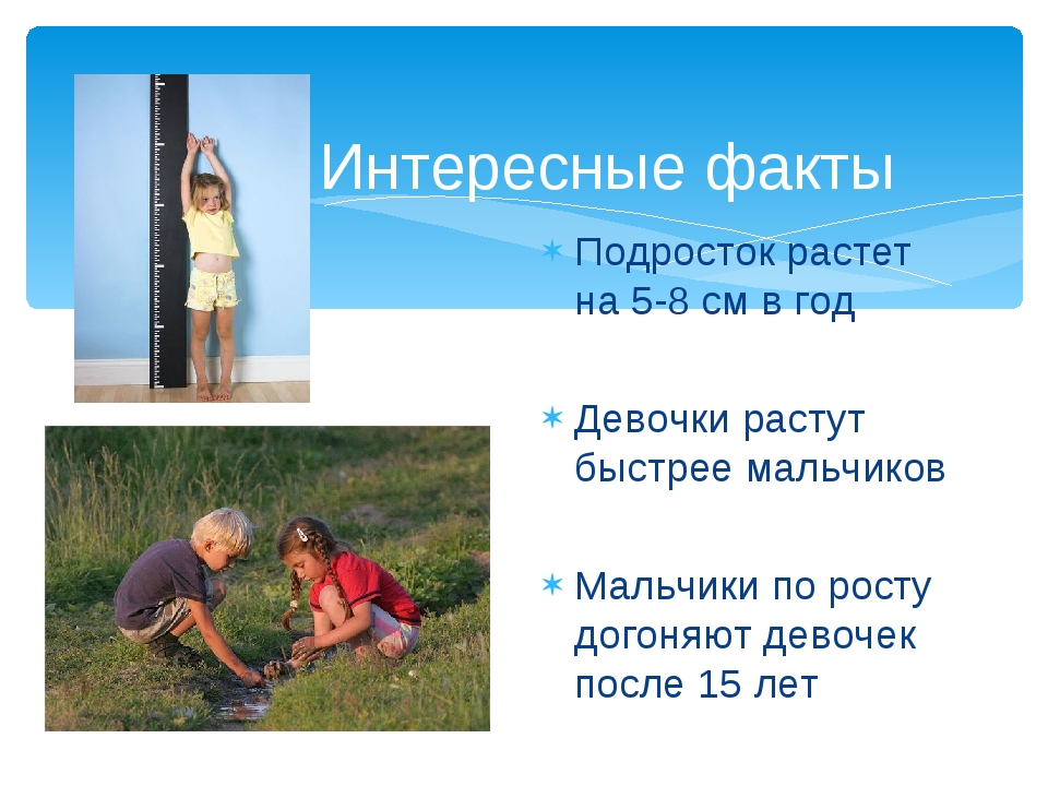 Интересные факты Подросток растет на 5-8 см в год Девочки растут быстрее маль...