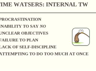 TIME WATSERS: INTERNAL TW PROCRASTINATION INABILITY TO SAY NO UNCLEAR OBJECTI