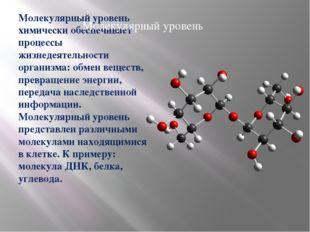 Молекулярный уровень химически обеспечивает процессы жизнедеятельности органи
