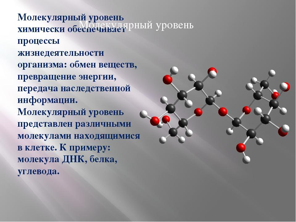 Молекулярный уровень химически обеспечивает процессы жизнедеятельности органи...